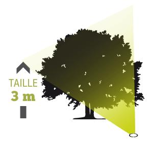 ECLAIRAGE ARBRE, luminaires & projecteurs pour arbres