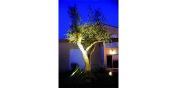 Éclairer son jardin : 3 étapes pour réaliser son plan d'éclairage