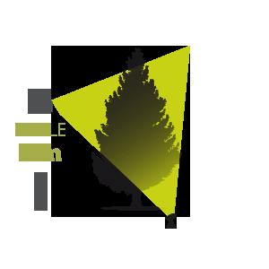 Eclairage ext rieur d 39 arbre avec projecteur encastr de - Spot eclairage arbre exterieur ...