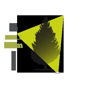 Eclairage d 39 arbre ext rieur avec projecteur asym trique for Spot eclairage arbre exterieur